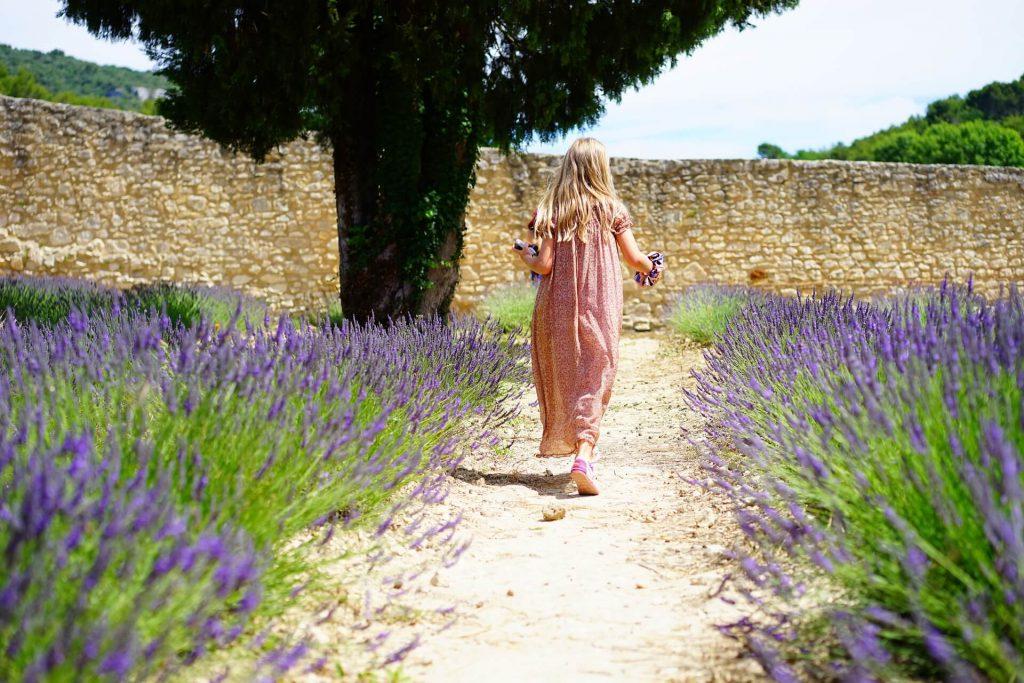 Is jouw tuin al zomer klaar?